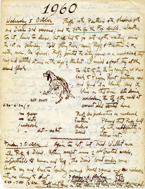In this journal, George notes that it is Ruff's 14th season, Feathers' 9th season, Shadows' 8th season, and Dixie's 3rd season. It is his 34th season hunting with his Fox double gun. During this year, he makes a trip to Cabin 22 at Canaan Valley. He hunts for grouse and woodcock in and around Canaan Mountain, Stony River Dam, Blackwater, Barnes Run, Scott Place, and Whitsell County. He writes of allowing rabbit hunting at Old Hemlock, and describes different methods of communicating with and training his dogs. Later, he decides not to continue hunting Feathers and Dixie together, and begins pairing Dixie and Shadow together. It is Feathers' last season. He makes note of the terrain and weather frequently, and keeps statistics for each dog.