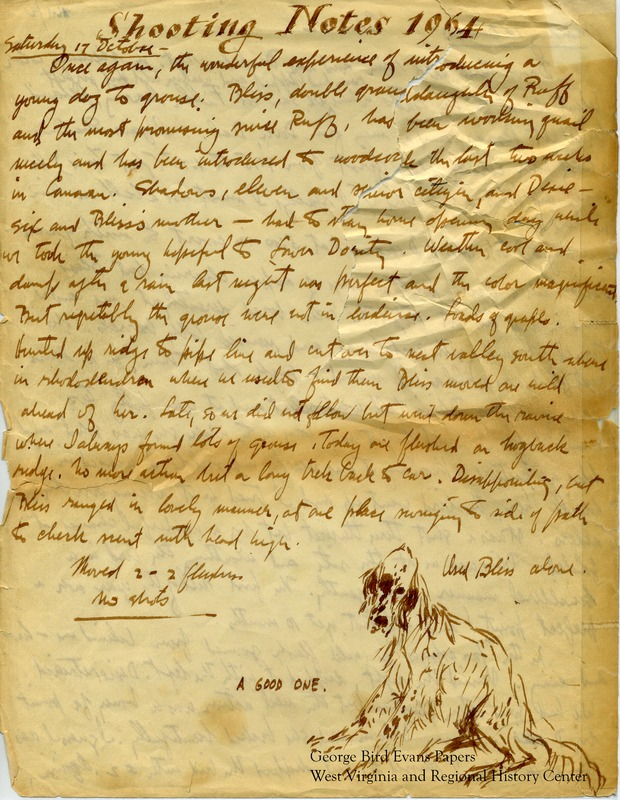 In this journal, George notes that his new dog, Bliss, the double granddaughter or Ruff, seems to be the most promising gun dog since Ruff. Accompanied by Dixie and Bliss, he hunts for quail, woodcock, and grouse in and around Lower Dority, Canaan Valley, Blackwater, Dolly Sods, and Watoga State Park. Shadows is involved in an accident while hunting. Later, George hunts in PA due to a fire closure in WV, and makes his way to the Arthurdale preserve in the post season to hunt pheasant. He makes frequent notes of the weather and terrain and keeps statistics for each dog.